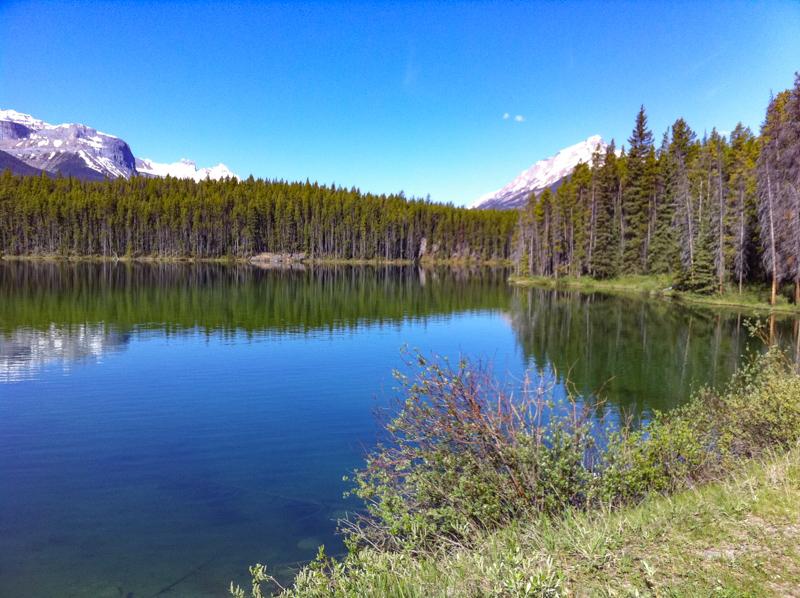 Herbert Lake Banff Canada