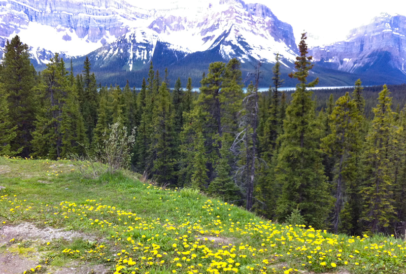 Icefields Parkway in Alberta Canada