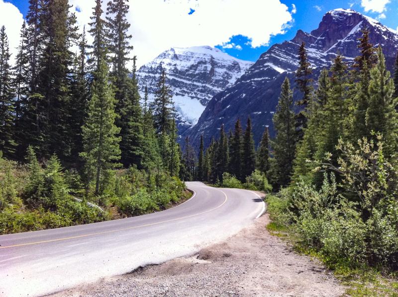 Cavell Road Jasper Canada