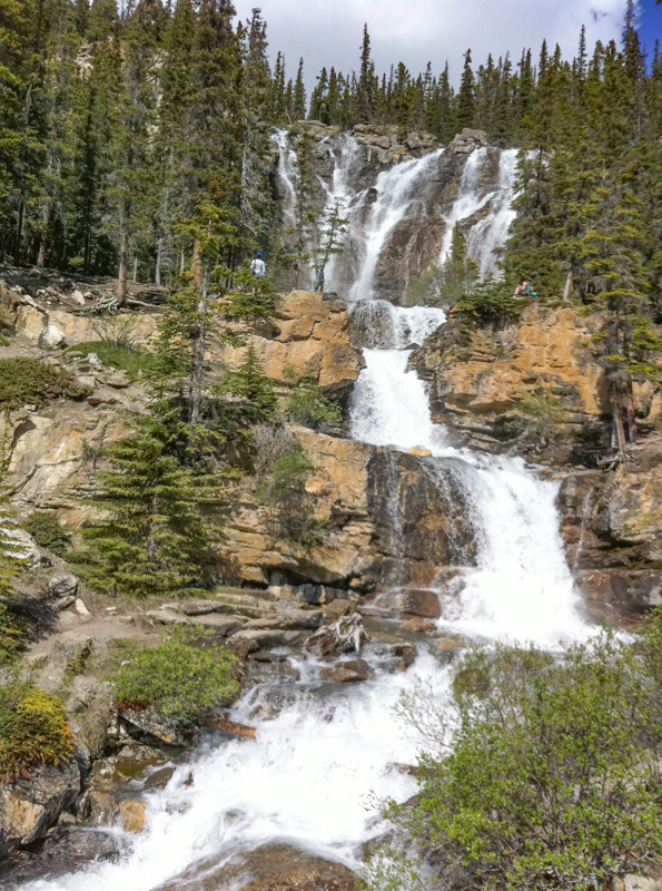 Tangle Creek Falls Icefields Parkway Canada