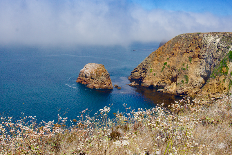 Channel Islands National Park California USA