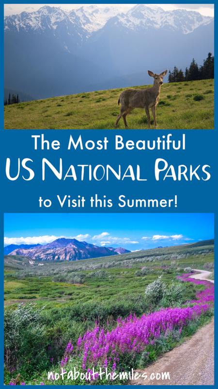 Discover the most beautiful US National Parks to visit in summer, from classic icons like Yosemite and Yellowstone to lesser known gems like Great Basin and Lassen Volcanic National Park! Stunning natural vistas, great hiking and photo spots, and wildlife viewing await you in these magnificent retreats.