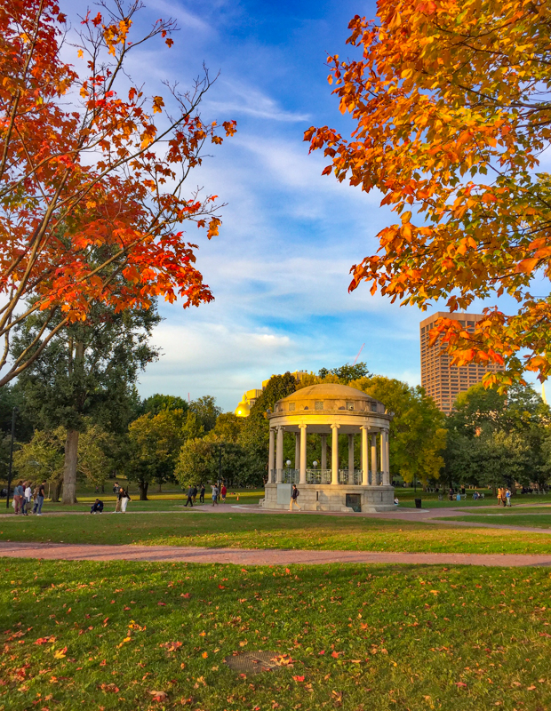 Boston Common Massachusetts USA