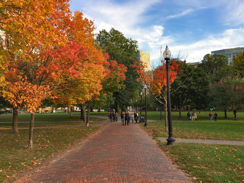 Boston Common in fall