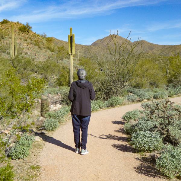 Desert Trail Scottsdale