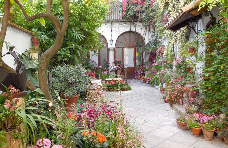 Pretty patio in Cordoba Spain