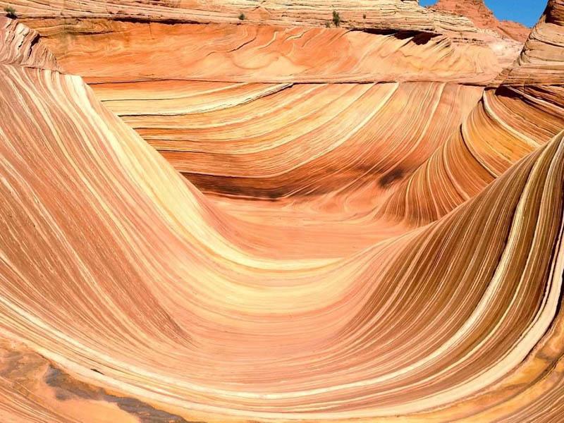 The Wave Arizona
