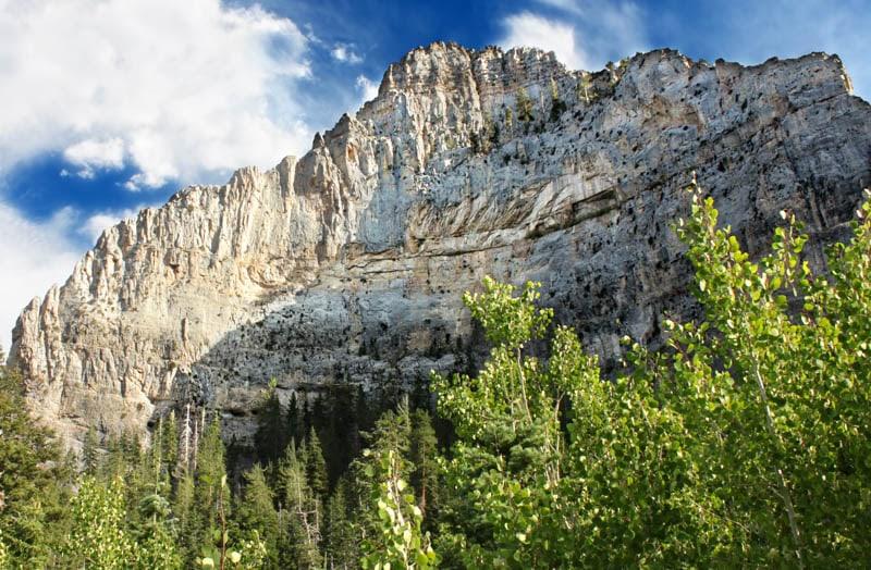 Echo  Cliff Spring Mountains National Recreation Area Nevada