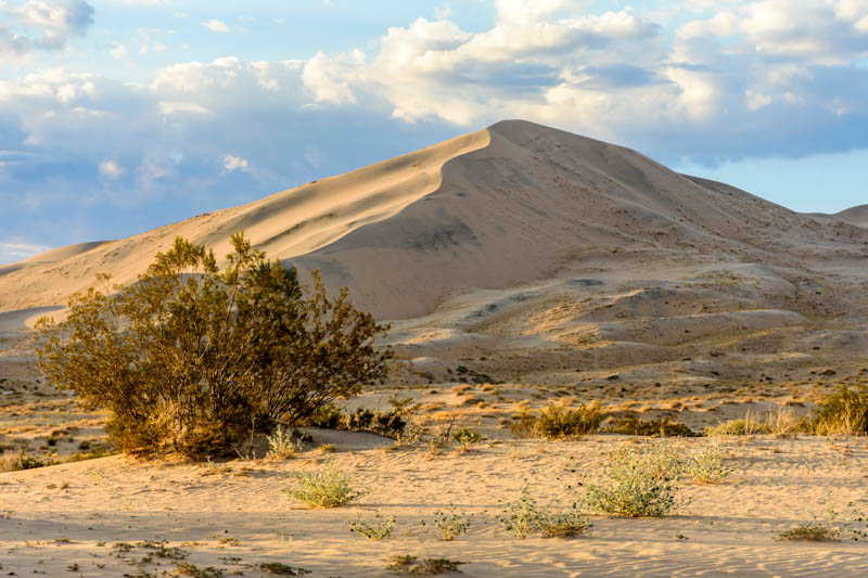 Kelso Dunes in the Mojave National Preserve in California