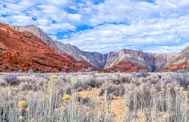 View from the Lava Flow Overlook Trail in Snow Canyon State Park Utah