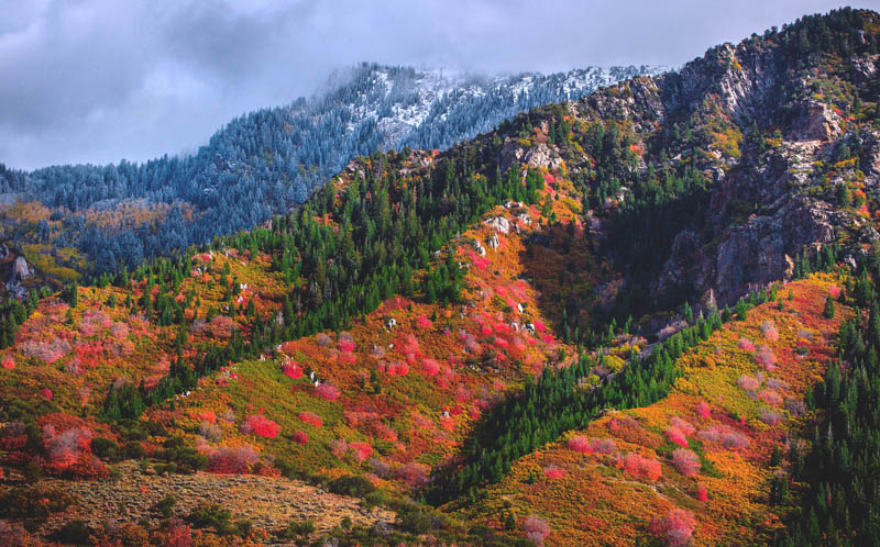 Fall colors in the Wasatch Range in Utah
