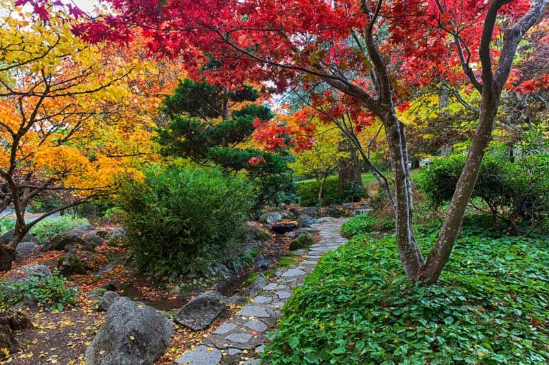 Fall colors at Lithia Park in Ashland, Oregon