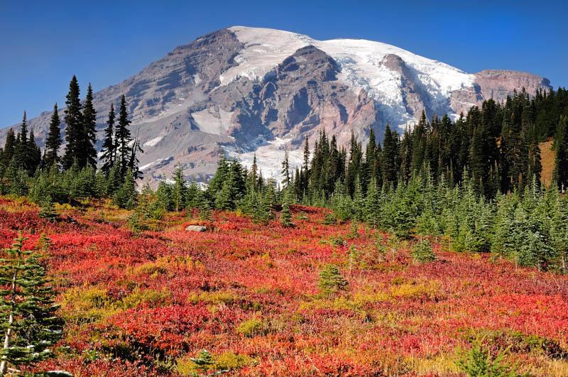 Beautiful view at Mount Rainier National Park in Washington