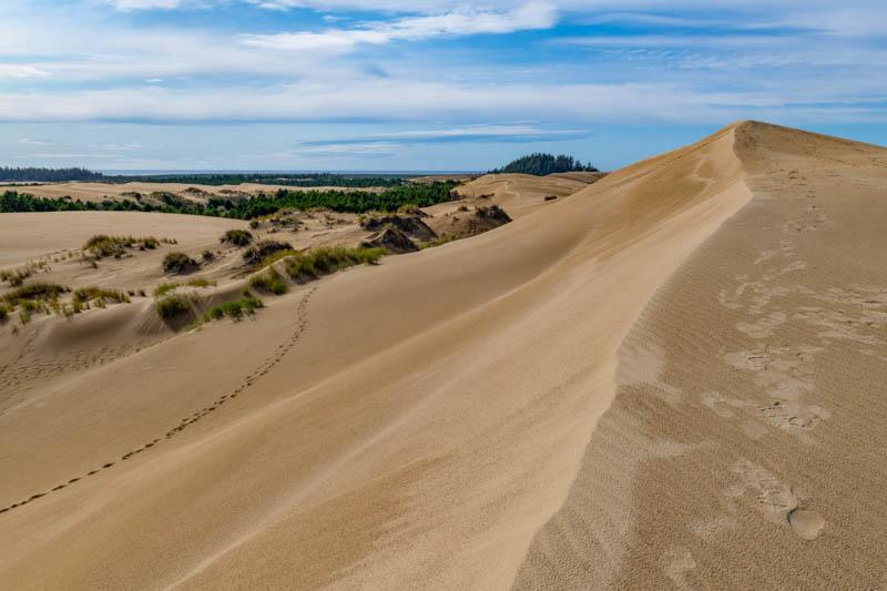 Oregon Dunes National Recreation Area in Oregon