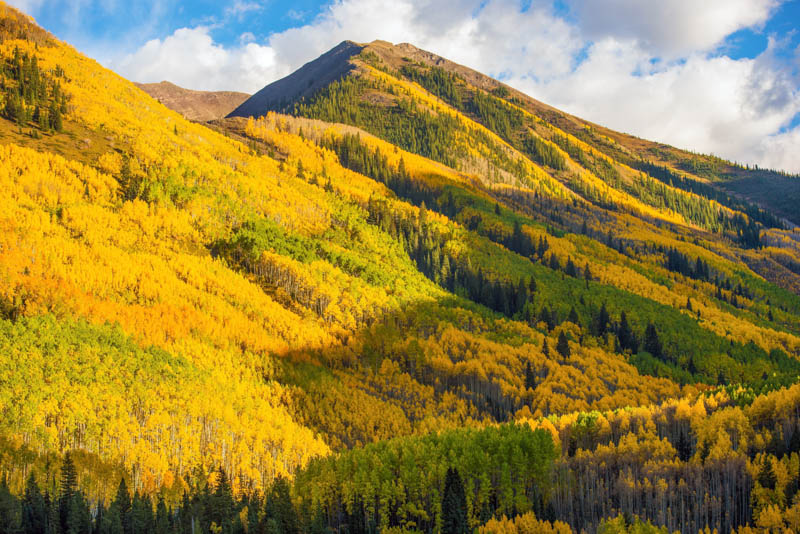 Fall colors in Aspen, Colorado