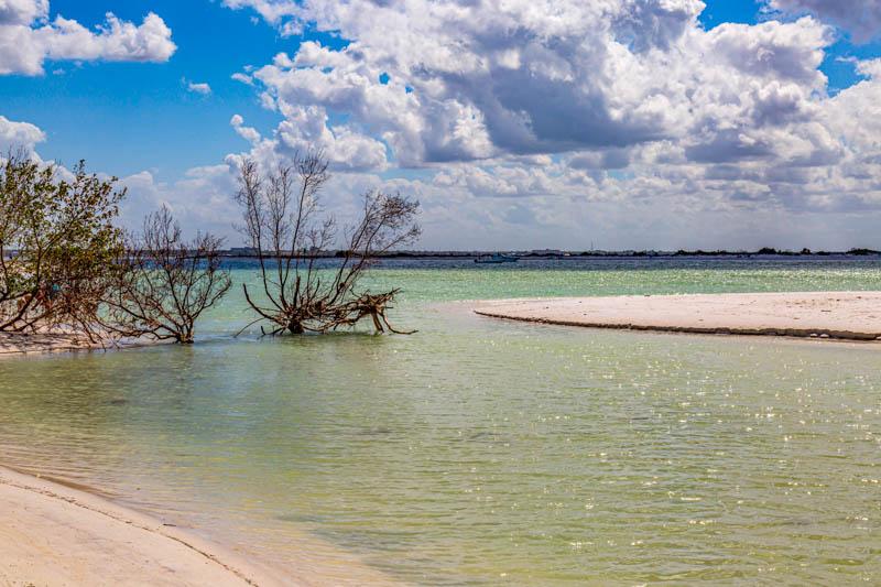 The beach at Honeymoon Island in Florida