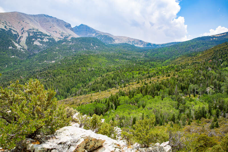 Beautiful landscape at Great Basin National Park in Nevada