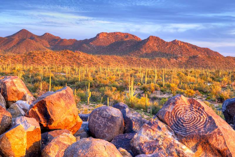Petroglyphs at Saguaro National Park in Arizona at golden hour.