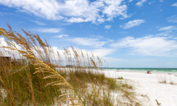 23 Fantastic Places to Visit in Florida!